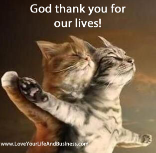 Cats_God_Thank_you_for_our_lives